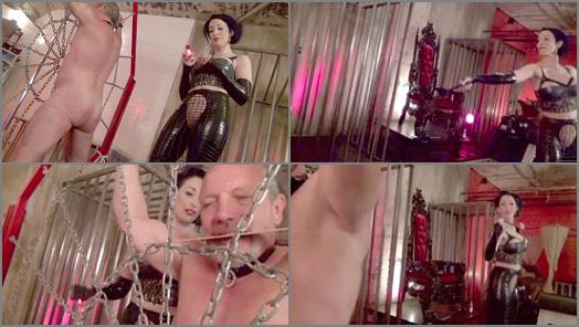 DomNation  THE WEB OF AGONY Starring Mistress January Seraph preview