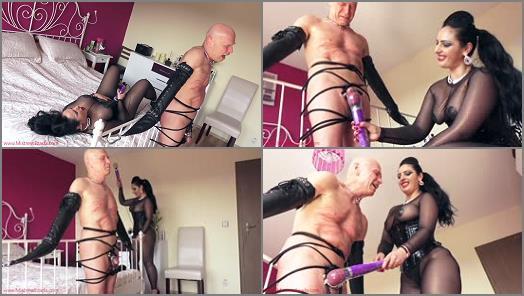 Cbt - Mistress Ezada Sinn – 436 days worth of cum