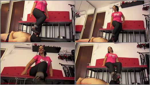 Mistress Ezada Sinn  My personal shoe cleaning slave preview