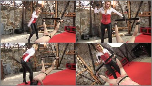 Corporal Punishment - SADO LADIES Femdom Clips – The Spiked Belt -  Mistress Akella