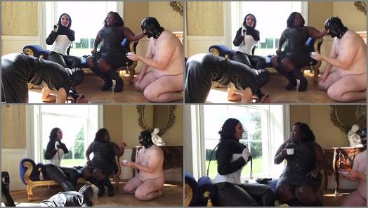 Femdom - UK BLACK MISTRESSES – Tea with Mistress Ezada -  Madame Caramel