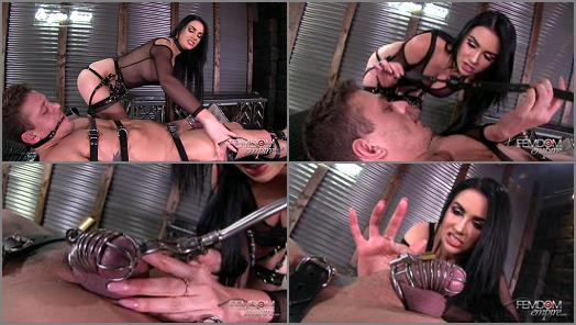 VICIOUS FEMDOM EMPIRE  Chastised  Gelded   Gigi Allens preview