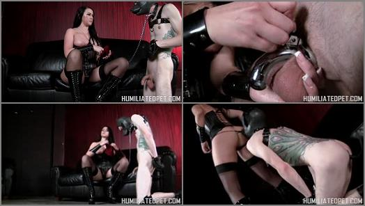 Puppy Play – VICIOUS FEMDOM EMPIRE – Chastity for the Leg Humper –  Mistress Alexis
