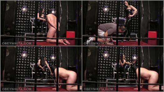 Mistress Nikita FemDom Videos  Obey Nikita  View From My Cage preview