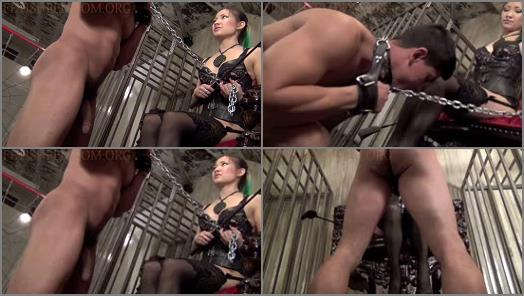 Asian Femdom Ballbusting  A ROYAL BALLBUSTING FROM HER THRONE   Princess XI  preview