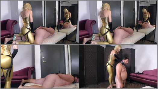 Worship The Wolfe  Establishing the Dommeslave Dynamic  preview