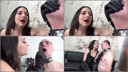 DomNation  THE ENSLAVEMENT OF MR ROBERTS FULL VERSION   Stella Liberty  preview