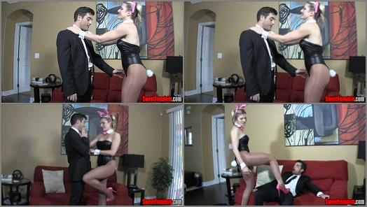 Sweet Femdom  Whore Wife Cuck Hubby Part 1   Cory Chase  preview