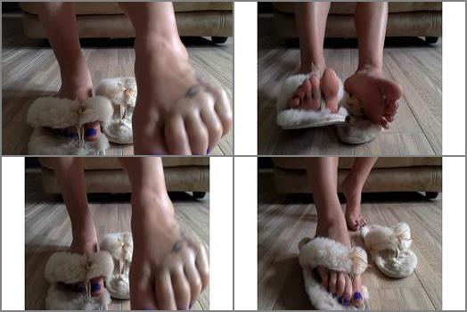 Misstiff Fluffy  Slipper Foot Fetish preview