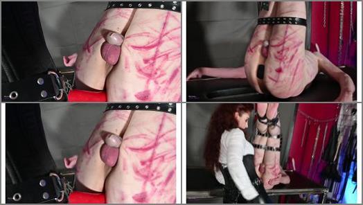 Femdom Online –  Mistress Lady Renee – Slut hole fucked