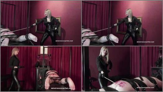 Domina Scarlet  Watch Me Punish My Boy  preview