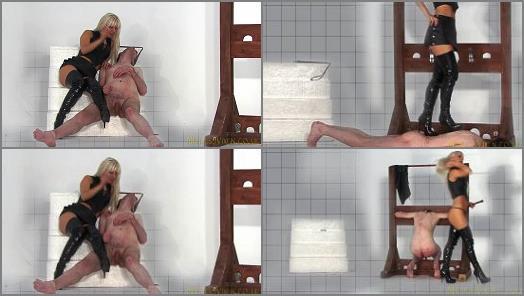Mistress Vixen  Mistress Vixen Virtual Vixen Part 3  preview