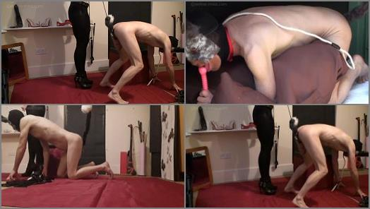Miss Trudy  Miss Trudy trains her pet to fetch and lick up its cum  preview