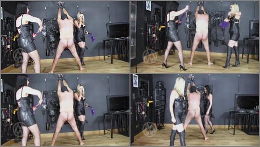 Mistress Nikki Whiplash  Flogged Douchebag Slave WL1465  Mistress Nikki Whiplash  Flogged Douchebag Slave WL1465  preview