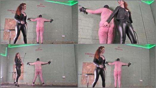 Mistress Lady Renee  Basement Bullwhipping  preview