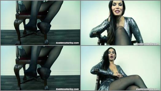 Cum Countdown – Goddess Harley starring in video 'Stomped Kicked And Trampled For Nylon Feet'