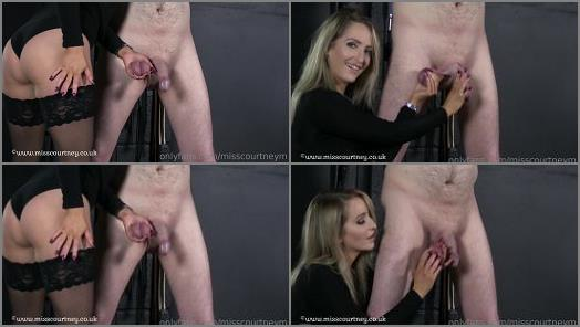 Download - Mistress Courtney starring in video 'Ball Slave Abuse'